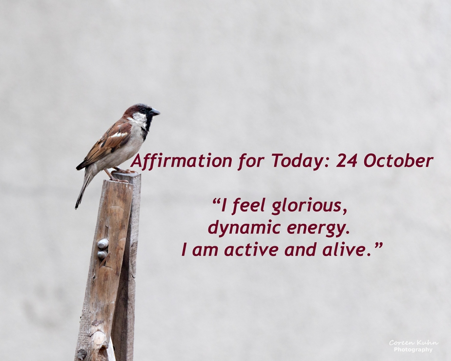 Affirmation for Today: 24 October2021