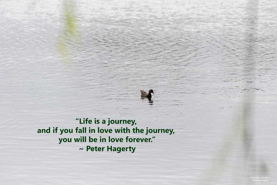 My Photo Someone's Quote: 25 October2021