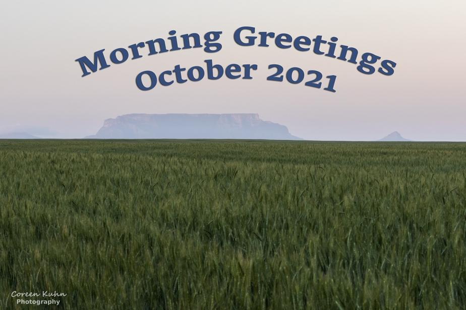 Good Morning: 27 October2021