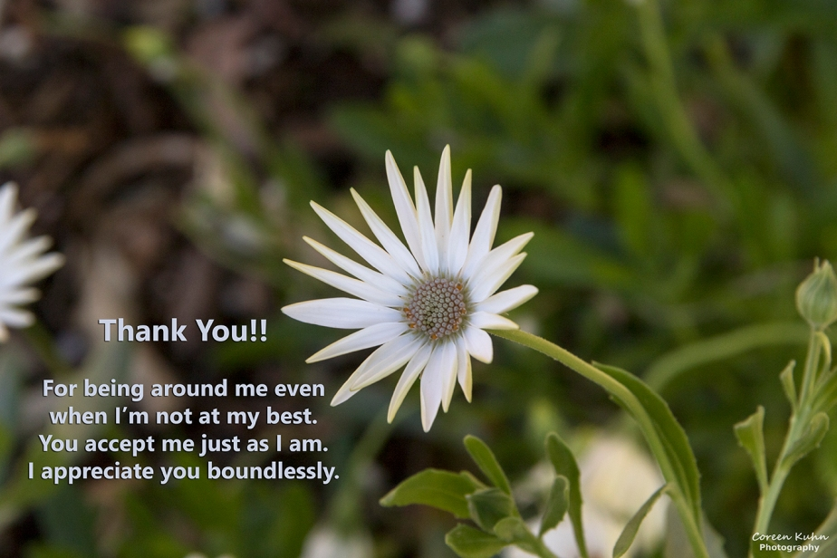 Saying Thank You To Our Loved Ones: 21 October2021